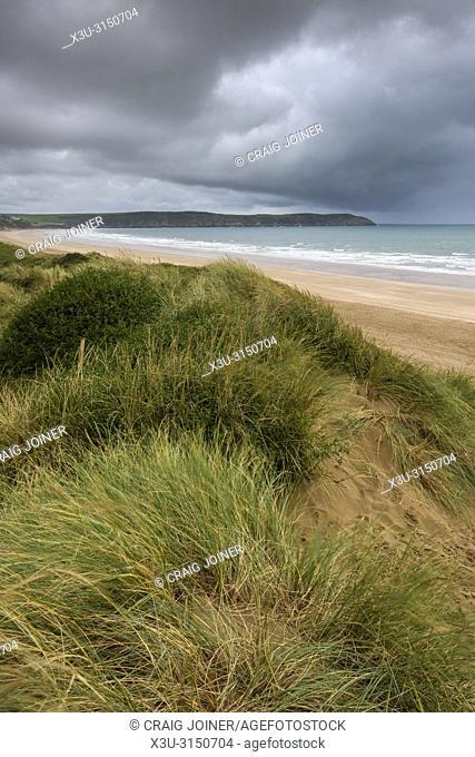 The sand dunes overlooking Woolacombe Sand on the North Devon coastline, England