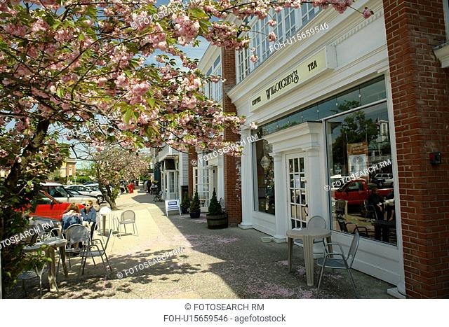 Madison, CT, Connecticut, downtown