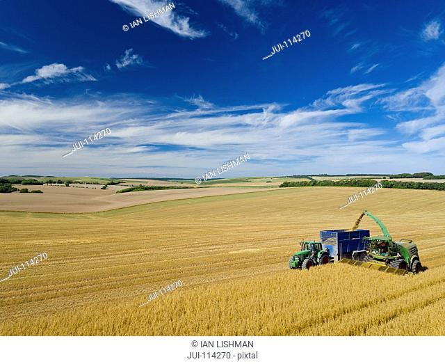 Aerial Shot Of Forage Harvesting Oats And Filling Trailer