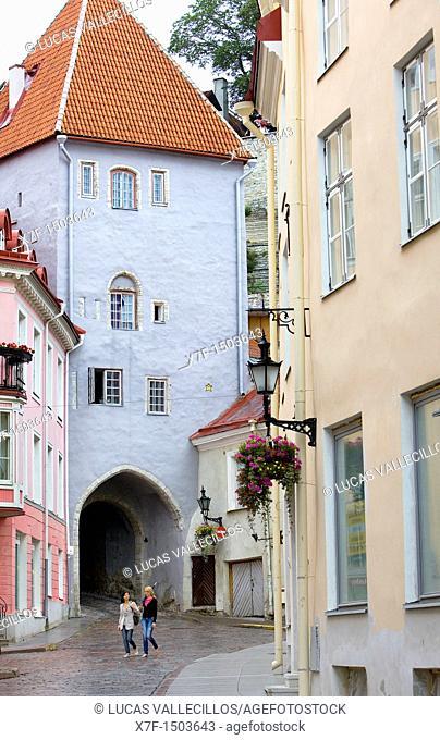 Gate in Pikk street,Tallinn,Estonia
