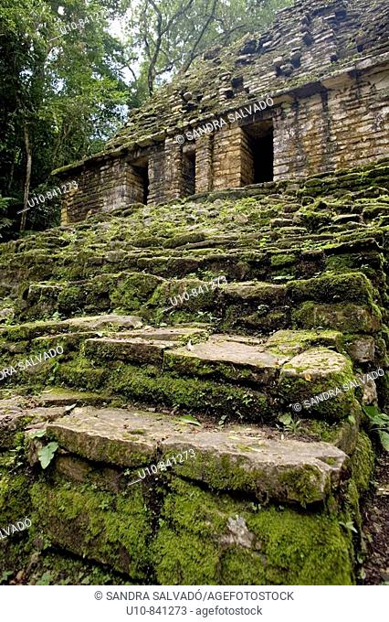 Yaxchilán archaeological maya site. Usumacinta river. Lacandon Forest. Chiapas. Mexico