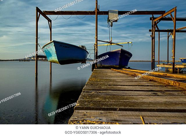 Fishing harbour,Bouzigues, Thau pond, Herault, France