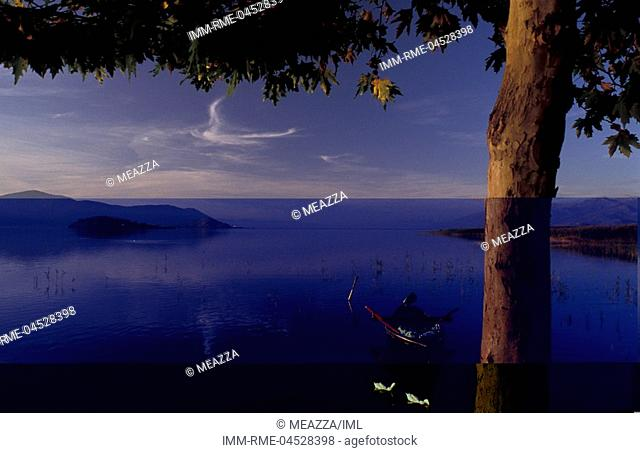 Lake Mikri Prespa, boat, ducks, Lake of Prespes, Macedonia West, Greece