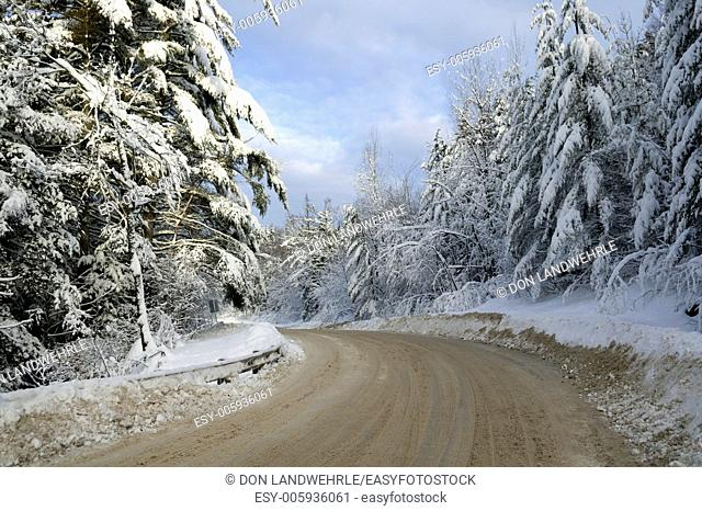 Dirt road leading between snow covered trees, Stowe, Vermont, USA