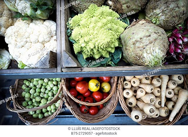 Organic vegetables in wooden crates and baskets: radishes, tomatoes, Brussels sprouts, cauliflowers. Etc. London, England
