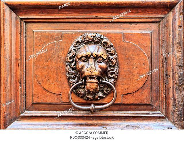 Doorknocker of cast iron, lion's head, Geneva, Switzerland