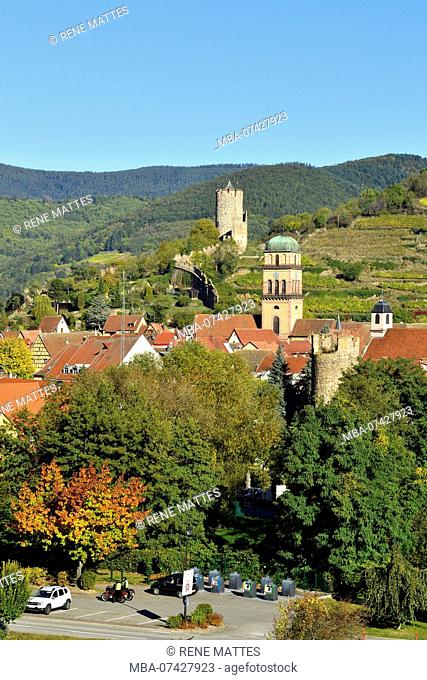 France, Haut Rhin, Alsace Wine Road, Kaysersberg, the vineyard, Sainte Croix church and the keep of the castle