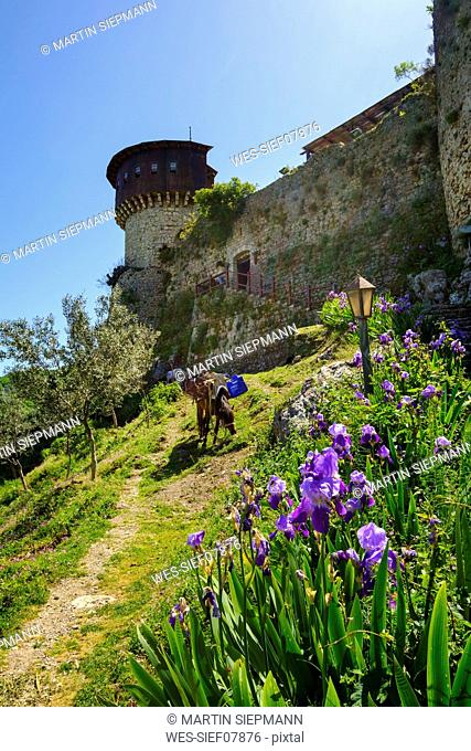 Albania, Tirana, Petrela, Castle Kalaja e Petreles