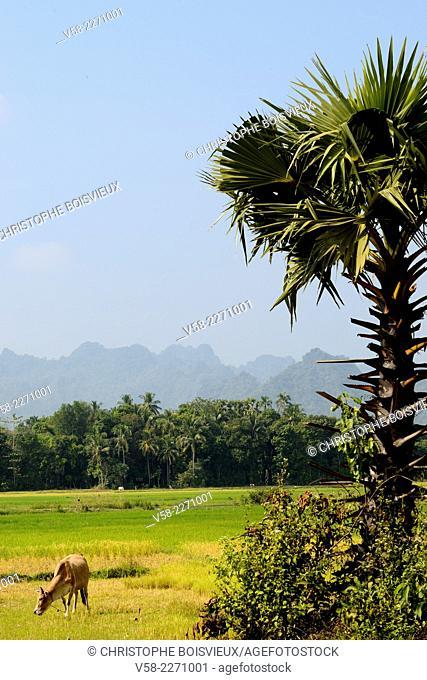 Myanmar, Kayin (Karen) State, Hpa-An surroundings