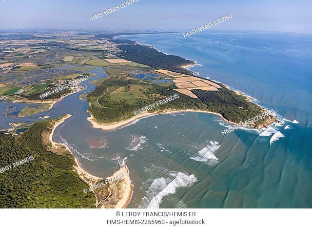 France, Vendee, Talmont Saint Hilaire, le Havre du Payre, the Veillon beach and la Guittiere marshes (aerial view)
