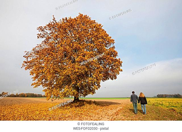 Germany, Bavaria, Couple walking hand in hand, rear view