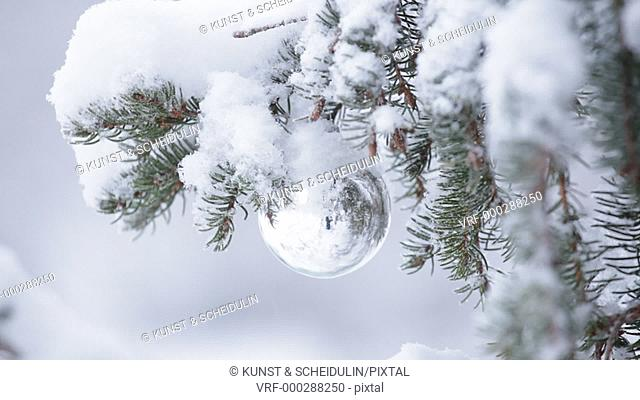 A silver Christmas bauble is hanging on a snow covered fir tree. Snow is falling and the ball swings slowly in the wind. Noraström, Västernorrlands Län, Sweden