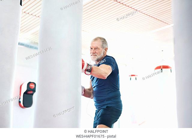 Fit senior man in boxing gloves fighting