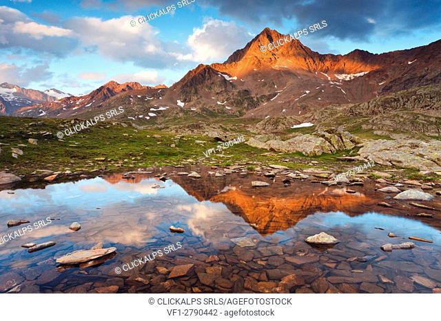 Gavia pass, Stelvio national park, Lombardy, Italy. The Corno of Tre Signori is reflected into a small puddle