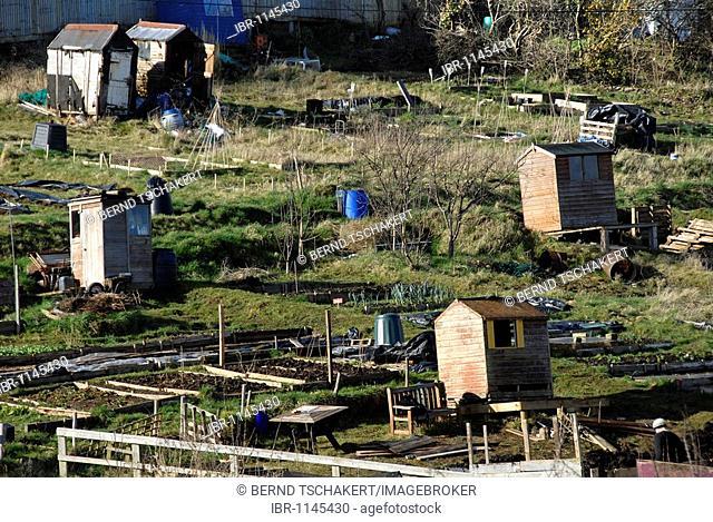 Allotment gardens, cottages, garden sheds, Bristol, England, UK, Europe