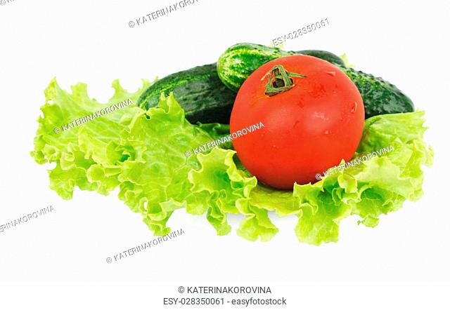 Lettuce, tomato and two cucumbers lying on the white plate