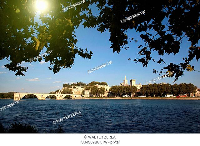 View of Pont d'Avignon on the river Rhone, Avignon, Provence-Alpes-Cote d'Azur, France
