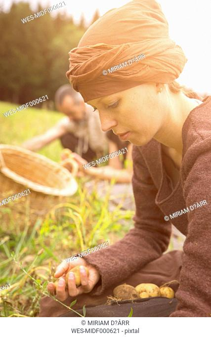Woman harvesting potatoes by hand