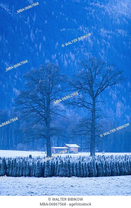 Austria, Tyrol, Stams, winter landscape