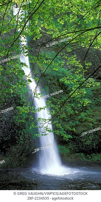 Horsetail Falls, Columbia River Gorge National Scenic Area, Oregon