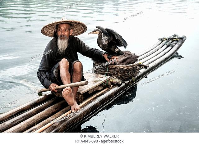 Chinese cormorant fisherman with a long beard sits on a raft with his bird perched on his hand, Li River, Xingping, China, Asia
