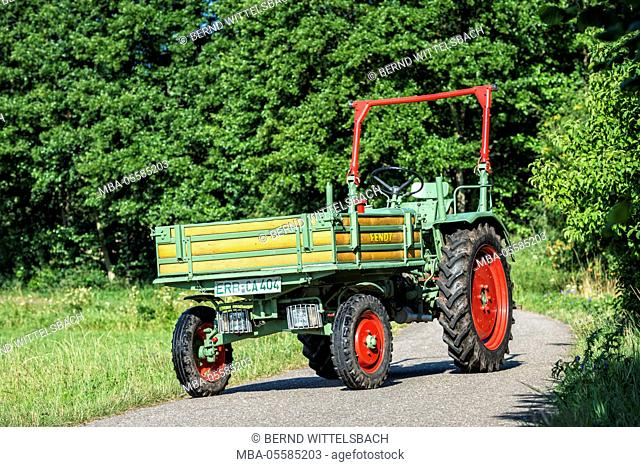 Breuberg, Hesse, Germany, Fendt, Dieselross F 231 GTS, year of manufacture 1971, 32 HP, cubic capacity 2218 cubic centimetres
