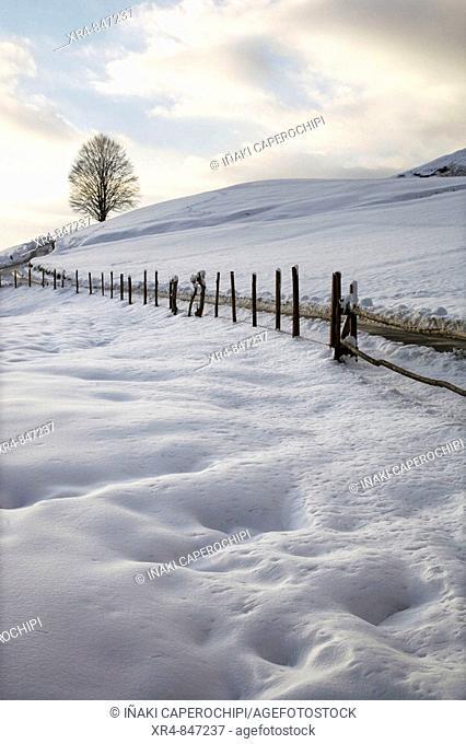 Snow covered mountain, Pagoeta Natural Park, Aia, Guipuzcoa, Basque Country, Spain