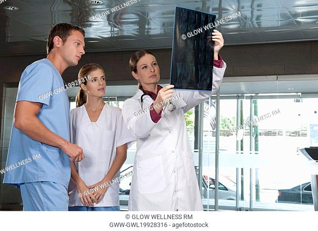 Doctor showing MRI scan to medical attendants