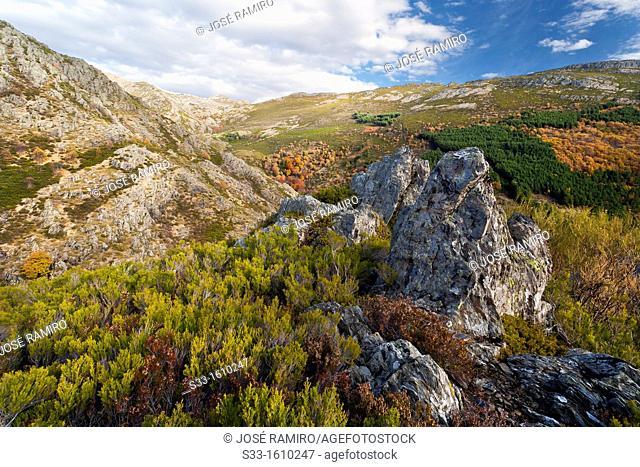 Alto de la Escaleruega in the Sierra Norte  Guadalajara  Castilla la Mancha  Spain