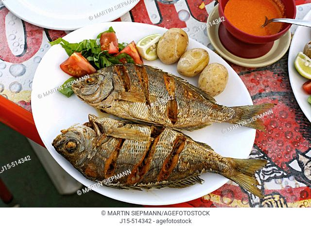 Typical fish dishes, Black Bream with 'papas arrugadas' (wrinkly potatoes) and red 'mojo' sauce, Fuerteventura, Canary Islands, Spain