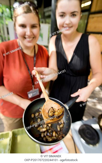 Prague zoo prepared unusual insect dishes for visitors within the day of insectivores in Prague, Czech Republic, July 22, 2017