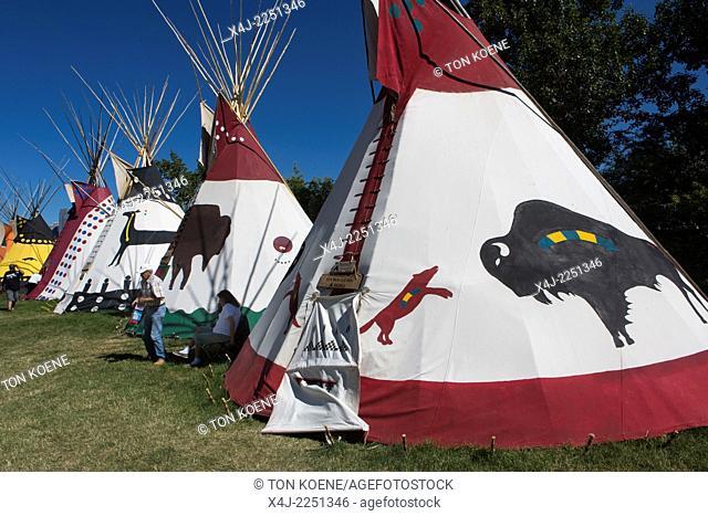 cowboy stampede in Calgary, Canada