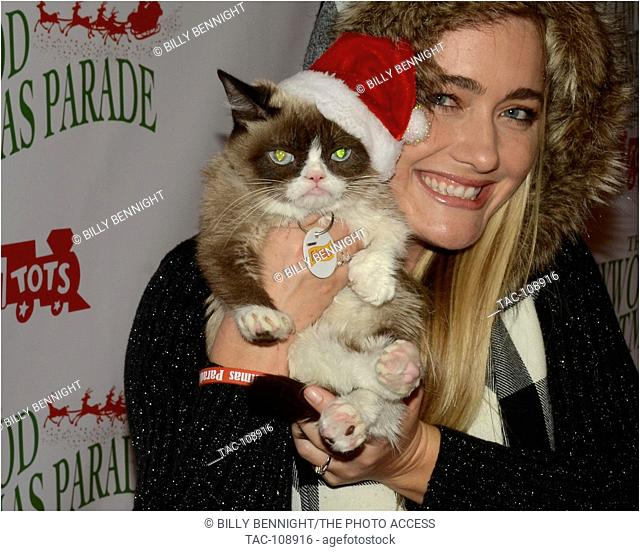 """Grumpy Cat arrives at the The 84th Annual Hollywood Christmas Parade - """"""""The Magic of Christmas"""""""" Featuring Marine Toys for Tots Foundation - November 29, 2015"""