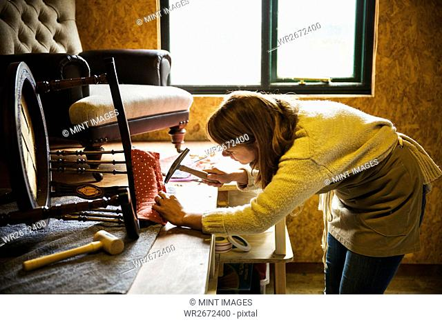 Upholstery workshop. A woman hammering fabric and padding to a chair frame