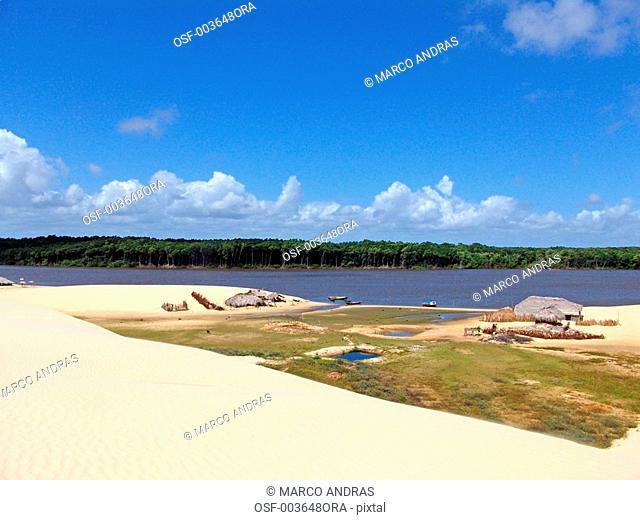 sao luis do maranhao natural green grass vegetation in the sands