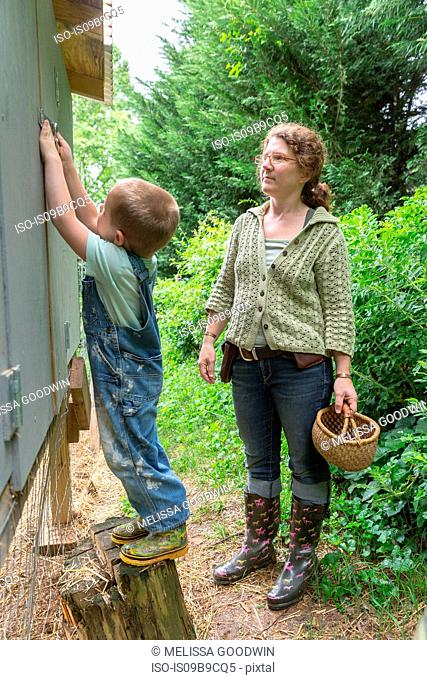 Mother and son collecting eggs from chicken coop