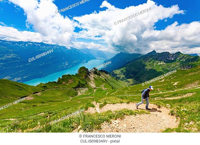 Man on mountain path, Brienzer Rothorn, Bernese Oberland, Switzerland