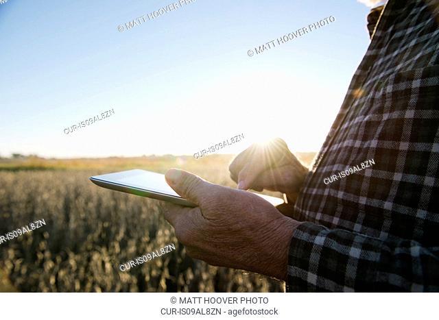Cropped shot of senior male farmer using digital tablet in soybean field, Plattsburg, Missouri, USA