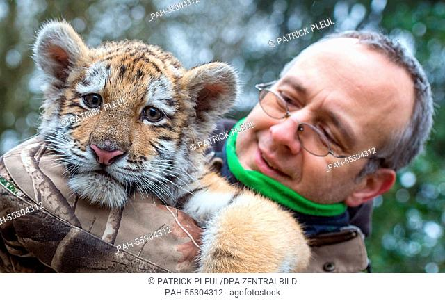 Dragan, the small Siberian tiger, being carried by his surrogate father, zookeper Uwe Fanke, at the zoo in Eberswalde, Germany, 20 January 2015
