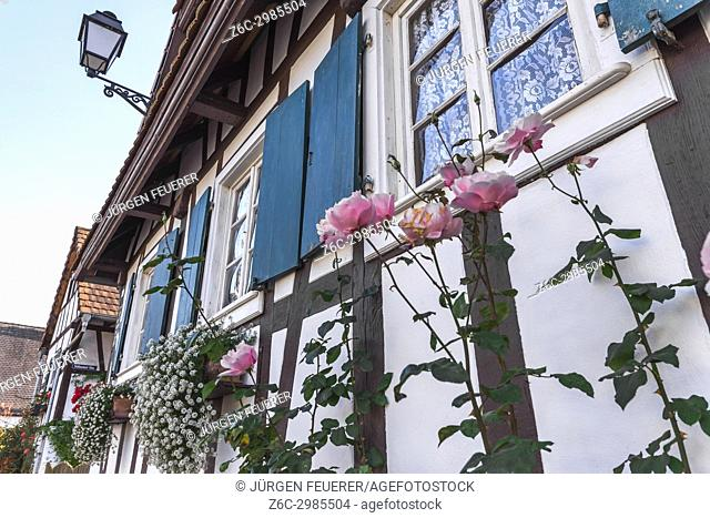 half-timbered house with flower decoration in Hunspach, small village in Northern Alsace, North Vosges, France, member of the most beautiful villages of France