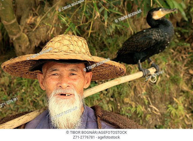 China, Guangxi, Xingping, Li River, cormorant fisherman,