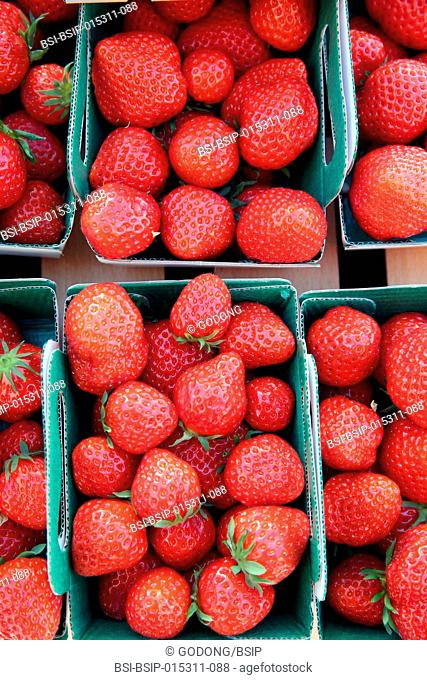 Fresh stawberries on a street market