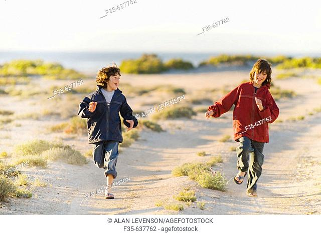 Brothers Run on Baja California Road