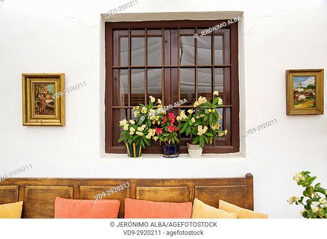 Flowers, rural house on a rainy day, Sayalonga La Axarquia, Malaga. Andalusia, Southern Spain Europe