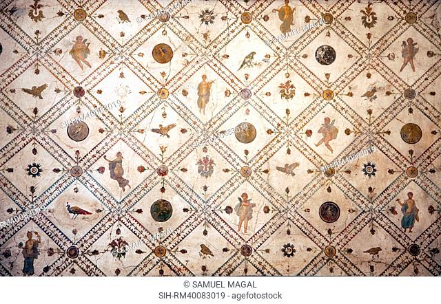 Italy, Naples, Naples Museum, from the Villa of Arianna in Stabiae, Wall Decoration
