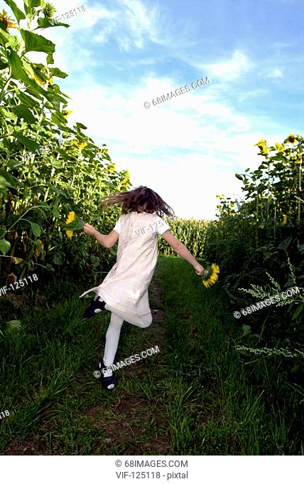 Girl playing in a sunflower field.  - Hamburg, GERMANY, 01/07/2004