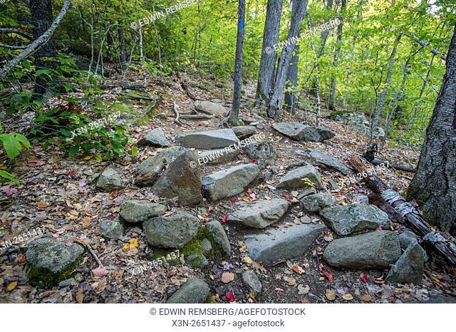 Hiking trail in Camden Hills State Park in Camden, Maine