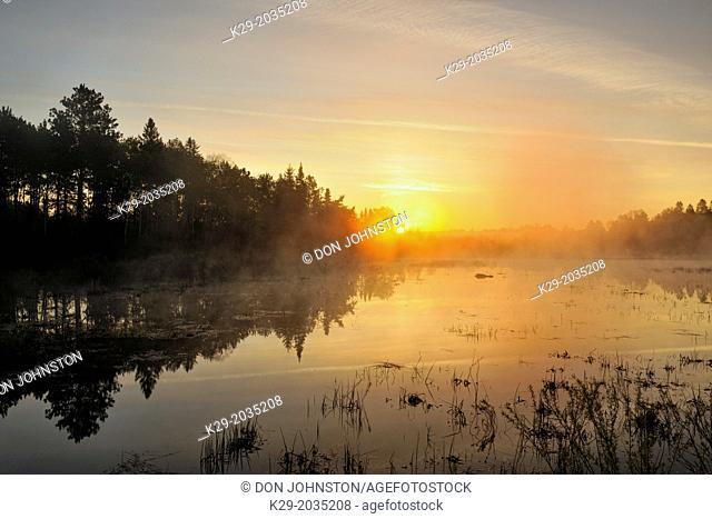 A foggy beaver pond at sunrise, Greater Sudbury, Ontario, Canada