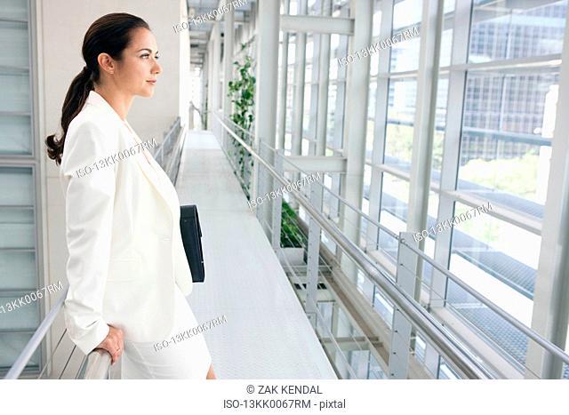 Portrait of a business women