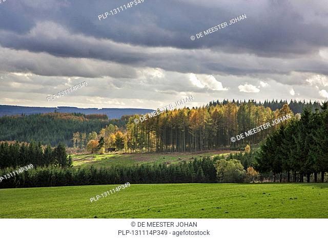 Rural landscape fields and forests in autumn near Vivy in the Belgian Ardennes, Luxembourg, Belgium